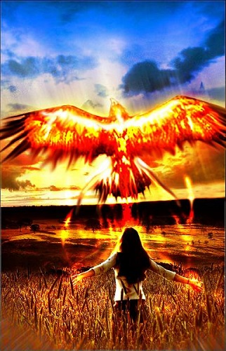 phoenix-rising-from-the-ashes.jpg