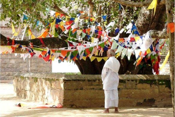buddhistprayertree