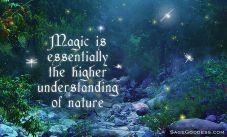 magicquote2